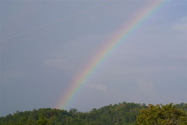 Rainbow - Stay at our scenic motel or RV campground in Bryson City, North Carolina, for your next vacation spot.